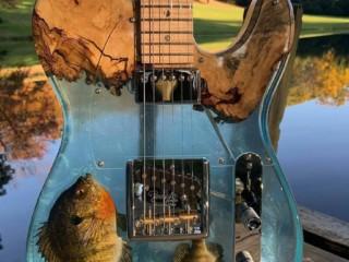 гитара смола 2