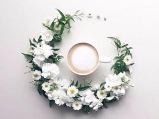 кофе и цветы 1