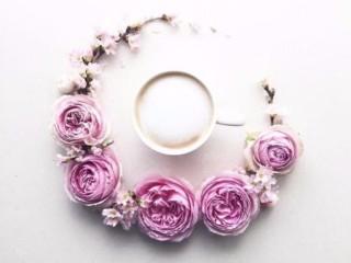 кофе и цветы 4