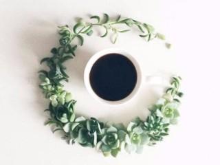 кофе и цветы 6