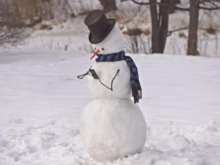 снеговик 21 ека