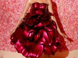 стеклянное платье 3
