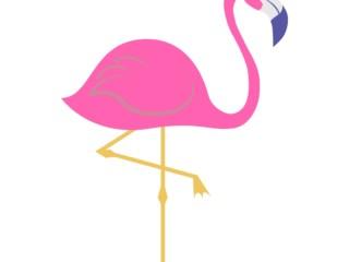 шаблон фламинго 5